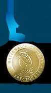 NSI Gold logo